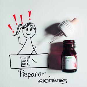 Preparar exámenes