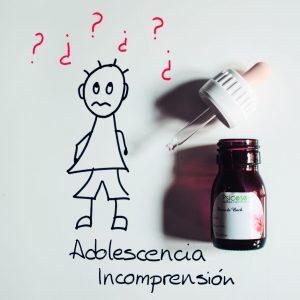 Adolescencia e Incomprensión