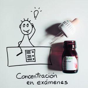 Concentración en exámenes